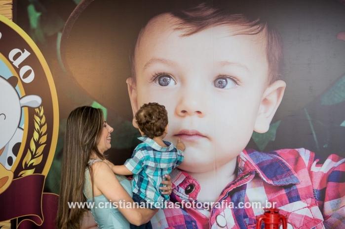 fotografa festa infantil bh decoração infantil fazendinha
